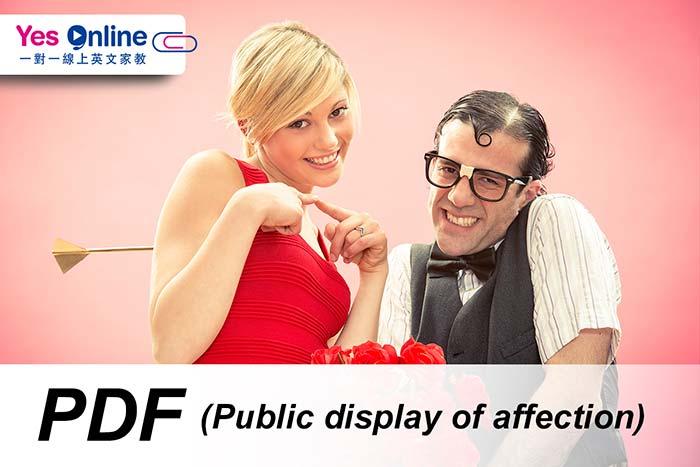 Public display of affection中文, 翻譯, 說明, 中英解釋